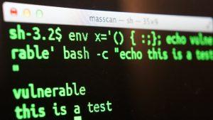 EDV Server Bild